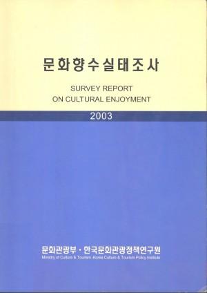 2003 문화향수실태조사