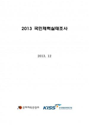 2013 국민체력실태조사