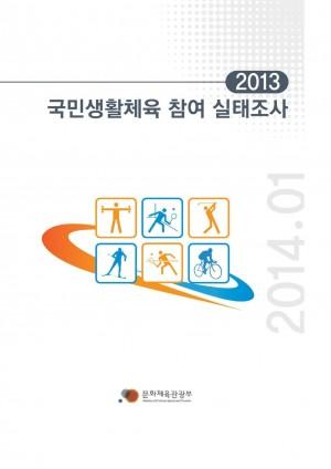 2013 국민생활체육참여실태조사